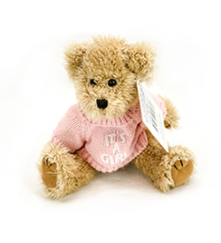 SF_PINK SWEATER BEAR